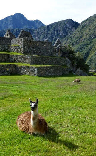 1 Day. Machu Picchu Full Day